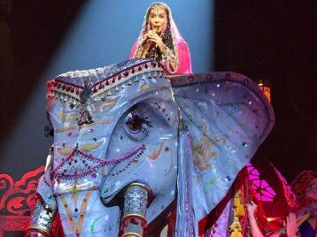 Свободу Каавану: певица Шер добилась возвращения слона иззоопарка вджунгли